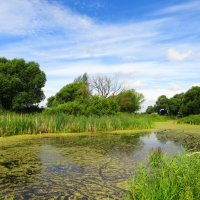 Река в летний день :: Андрей Снегерёв