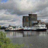 На Химкинском водохранилище... :: Юрий Моченов