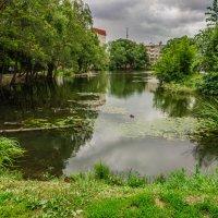 Соловьиный пруд :: Andrew