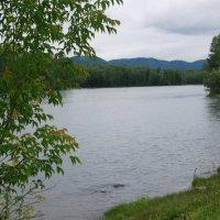 Катунь, июнь :: nataly-teplyakov