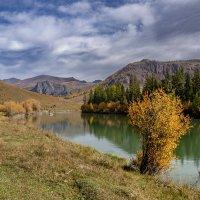 Чуя-река :: Виктор Четошников