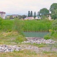 Мзымта вытекает из высокогорных озёр и впадает в Черное море :: Raduzka (Надежда Веркина)