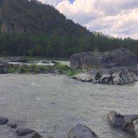 Горный Алтай . Река Катунь . :: Мила Бовкун