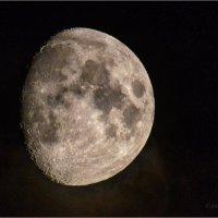 Луна :: Анна Солисия Голубева