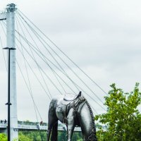 Памятник «Лошадь белая». :: Вадим Басов