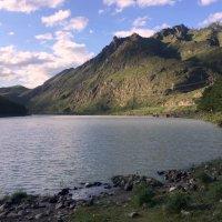 На Алтае . Залив реки Катунь . :: Мила Бовкун
