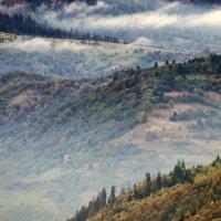 На Синевирском перевале :: Alexandеr P