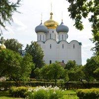 Собор Смоленской иконы Божией Матери в Новодевичьем монастыре :: Наташа *****