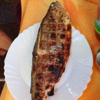 Обидели рыбу ((( :: Борис