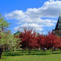 Весна в Коломенском :: Vera Ostroumova