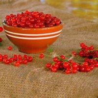 Красная-прекрасная :: Татьяна Лютаева