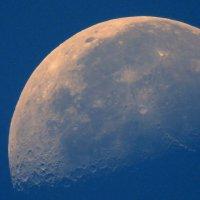 кусочек Луны. :: Пётр Беркун