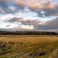 Дождливые дни :: Лара Симонова
