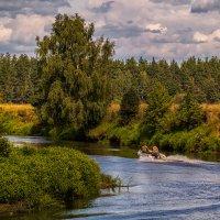 Из далека долго течет река Клязьма # 3 :: Андрей Дворников