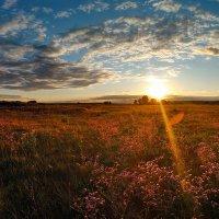 Яркий закат. :: Владимир M