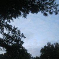 Луна :: Maikl Smit