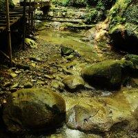 Течёт река по камням. :: sav-al-v Савченко