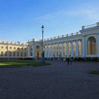 Александровский дворец. Пушкин :: Наталья