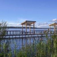 Озеро Сенеж :: Елена Елена