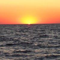 Солнце взойдет... :: mAri