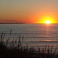 Закат на острове беринга :: Александр Белов