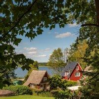 Вид на дачи у озера :: Николай Гирш