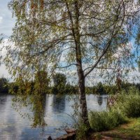 Старица Москва-реки. :: Владимир Безбородов