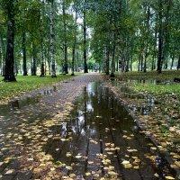 Осень :: VADIM *****