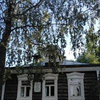 Белая береза под моим окном.... :: Yulia Raspopova