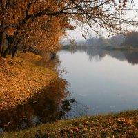Осенние берега безветрием вдохновляют :: Volodymyr Shapoval VIS t