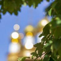 Золотые купола :: Александр Леонов