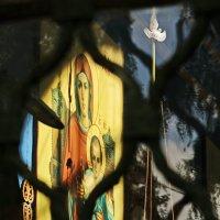 Церковь Рождества Пресвятой Богородицы в Торопце. :: Ирина Нафаня