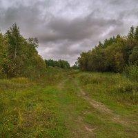 По дороге в осень :: Оксана Галлямова