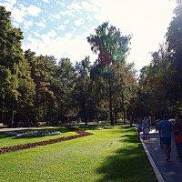 Москва. Парк Кузьминки. :: Владимир Драгунский