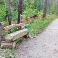 скамеечка в парке :: Владимир