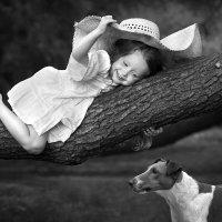Прятки с собакой :: Виктория Иванова
