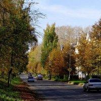 Осень в Северске :: Зося Каминская