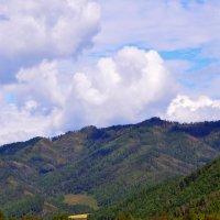 Горы Алтая. :: Штрек Надежда