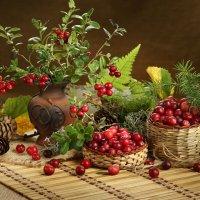 Лесные ягоды :: Татьяна Беляева