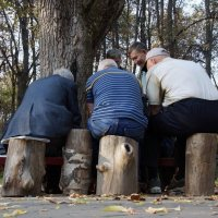 Осень. Шахматы :: Сергей Кузнецов