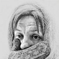 Зима :: SanSan