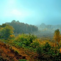 Утро туманное :: Mikhail Irtyshskiy