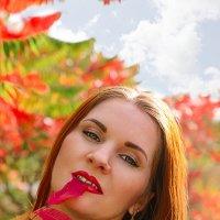 Рыжая осень :: Анна Чуйкова