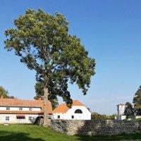 Мыза и парк Кальви :: veera (veerra)