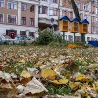 Осень и Уличная библиотека :: Андрей