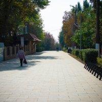 Таганрог Приморский парк :: Mitrex .