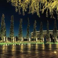 Краснодар арена :: cfysx