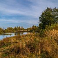 Ну вот и Октябрь ...# 4 :: Андрей Дворников
