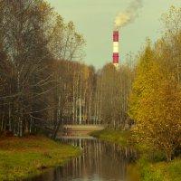 Осенние зарисовки :: Сергей Белко