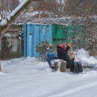 После снегопада :: Наталья S
